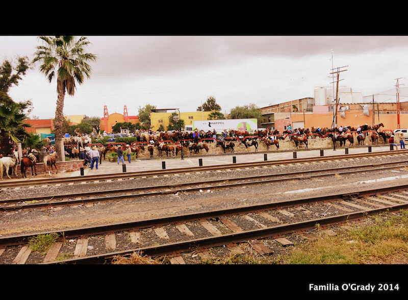 A California Cowgirl Giddies Up: Blessing Of The Horses, San Miguel de Allende
