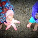 Sand dollars on fingers Baja