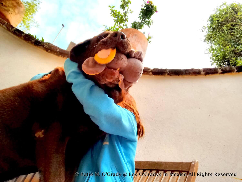 SEAMUS & MAIREAD HUGGING 2