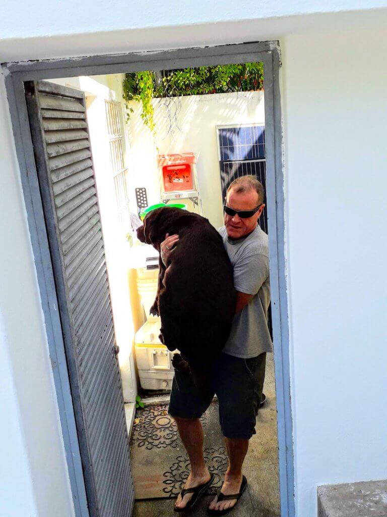 Famous Seamus: A Tale of a Dog's Immigration to Mexico